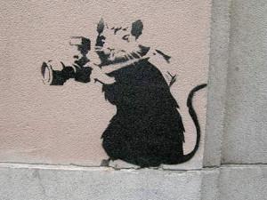 BANSKY RAT