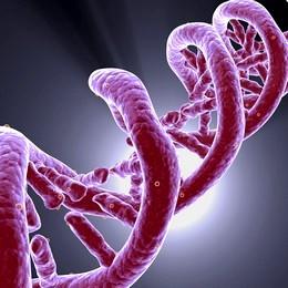 analisi-genomiche