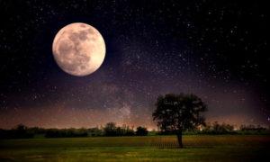 il-14-novembre-tutti-a-naso-in-su-ce-la-superluna