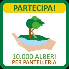10mila alberi per pantelleria